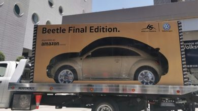 imágen de foto de auto beetle